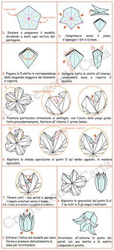 Campanula Origami - schema