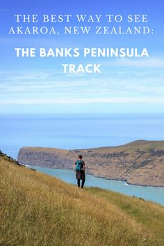 Our experience walking the Banks Peninsula Track, New Zealand.