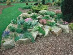 natural-looking rock garden