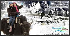 Morpheus valley resort luxury cottage in Manali offers best honeymoon package for newly married couples.