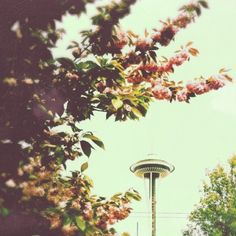 spring space needle