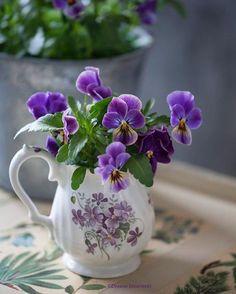 """katysflowersandantiques: """"Pansies in a vintage vase. """""""
