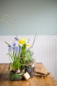 Grape hyacinth, and daffodils in Mason jars for spring. So cute!