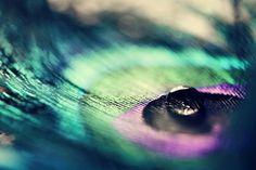 Goutte de l'eau et de la plume paon : irisé 5 x 7 Fine Art Macro photographie Teal Green Purple Home Decor