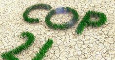 COP 21 : Les maires et les présidents d'intercommunalité s'engagent pour la planète
