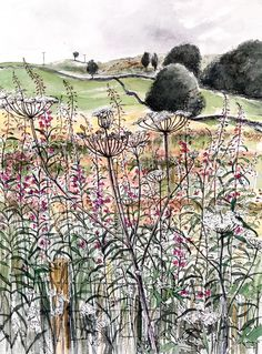 Pamela Grace is an artist and printmaker living and working in Galloway. Her work is based on drawing - realised in pen and ink wash, etchings and solar-plate etchings Watercolor Sunflower, Pen And Watercolor, Watercolor Paintings, Watercolours, Landscape Paintings, Woman Painting, Painting & Drawing, Botanical Illustration, Illustration Art