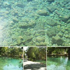 > Gracias a #Dios aun nuestros balnearios siguen vivos tenemos agua!  #jaraguenses en #LasMarias