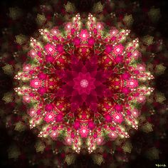 #Mandala v/Flickr [#Fractal #Art]