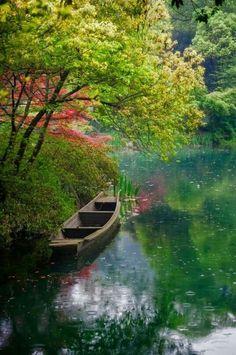 Ottobre,  il mese dei ricordi,  il mese del caldo  abbraccio della natura  tra il verde dell'erba  e il bruno degli alberi.  Stephen Littleword Piccole cose