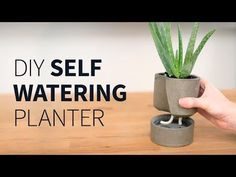 DIY Geometric Concrete Planters - YouTube