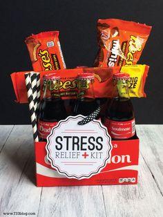Stress Relief Kit Gift Idea - seven thirty three