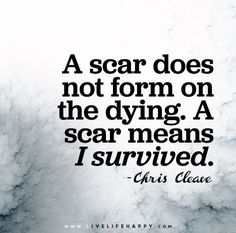 A scar does not form on the dying. A scar means that I survived..