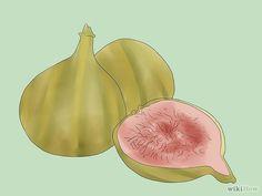 Grow Figs Step 1.jpg