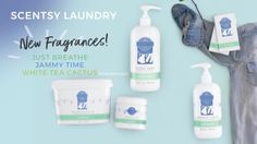 Scentsy 2017 fall winter Laundry brings you 3 new scents: Just Breathe, Jammy Time, and White Tea Cactus
