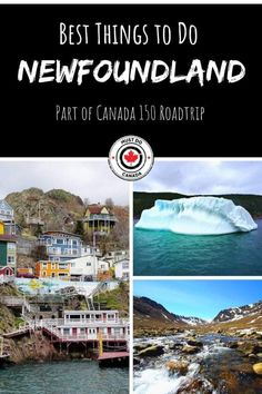 Looking for the best things to do in Newfoundland during your Newfoundland travels? In this travel guide and video, we show you some of the best things to do in St john's, road trips, and more! Newfoundland Canada, Newfoundland And Labrador, Newfoundland Icebergs, Newfoundland Tourism, East Coast Canada, Gros Morne, Stuff To Do, Things To Do, Canadian Travel
