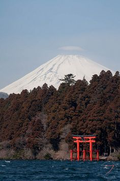 Mt. Fuji, Japan, climbing that in exactly one year.