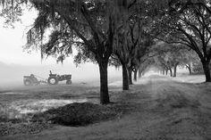 Beautiful tractor shot...