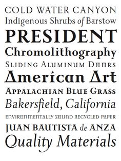 """ Used on Hendrickson's edition of Calvin's ""Institutes"". Jonathan Barnbrook, Serif Typeface, Font Family, American Art, Typography, Design, Letterpress, Letterpress Printing"