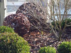 Der Garten Im Februar bodendecker gegen unkraut garten and gardens