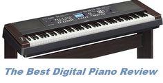 Best Digital Piano, Learning, Studying, Teaching, Onderwijs