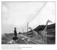 "Simone Maestra. ""Once upon a time"".  ""Caminos de Hierro"" 2012"