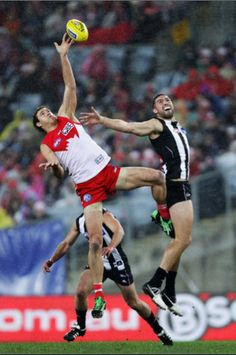 swans vs collingwood - 685×1024