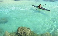 An clear, futuristic kayak, which makes it look like its rowers are floating on water, is being promoted as the ideal way to take your encounters with sea creatures to a new level. Floating In Water, Canoe And Kayak, Open Water, Sea Creatures, Futuristic, Kayaking, Ocean, Explore, Dates