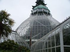 Wright Park, Tacoma....(Seymour Botanical Conservatory)...Pretty Edwardian glass greenhouse in a nice downtown Tacoma park.  We really like UW's arboritum, and expected something more like THIS on our first visit, but this is in Tacoma :)