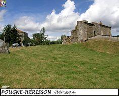 79POUGNE-HERISSON_herisson_102.jpg