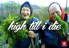 Grandma's secret shit.... #cannabis #marijuana