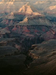 Incredible colors in the Grand Canyon, AZ : EarthPorn National Photography, Equine Photography, Beauty Photography, Grand Canyon Az, Horse Farms, Nature Photos, Nature Images, Mother Earth, Mother Nature