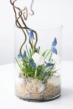 Frühling im Glas s i n n e r a u s c h: Spring in the glass The post Spring in the glass appeared first on Leanna Toothaker. Diy Home Crafts, Decor Crafts, Diy Home Decor, Deco Floral, Arte Floral, Summer Decoration, Spring Decorations, Spring Crafts, Easter Crafts