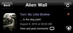 Tom: meu Irmãozinho   .. no parque canino