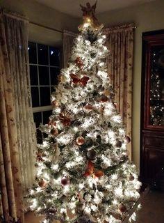 Merry Christmas!  www.mylanguageconnect.com