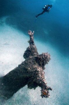 10 Statues Found By Deep Sea Divers! 76403e38e80d17fbe948cf7994dd90bc--underwater-life-abandoned