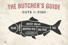 Cut of meat set. Butcher sheme. Fish by FoxysGraphic on @creativemarket