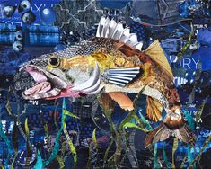 Walleye Collage Art by Deborah Shapiro made from torn magazines