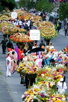 #Medellin #Colombia #Flower Festival.  Would love to be in Medellin during the festival.