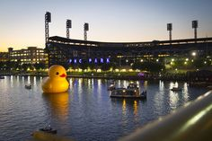 Giant Rubber Duck in Pittsburgh #quackpgh.  Baseball and a giant rubber duck!  What's not to like?