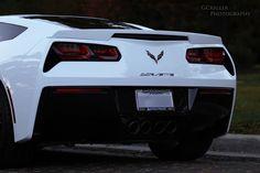 Rear 2 2014 Stingray, Bmw, Vehicles, Sports, Hs Sports, Car, Sport, Vehicle, Tools