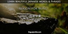 For Learners: 50 Beautiful Japanese Words & Phrases Pt. 7 Japanese Phrases, Japanese Kanji, Beautiful Japanese Words, Japanese Language Proficiency Test, Saturday Quotes, Best Essential Oils, Guerrilla, Learning To Be, Cool Words