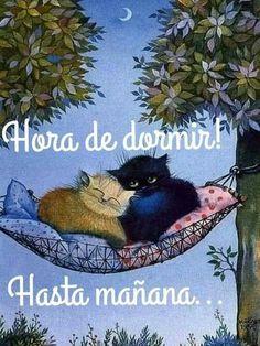 Good Night, Pandora, Teddy Bear, Cats, Animals, Angeles, Stickers, Quotes, Nighty Night