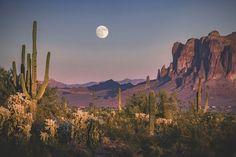 """""""Arizona Highways: August else posted this. """"Arizona Highways: August else posted this.now that is eerie. Desert Aesthetic, Nature Aesthetic, Desert Dream, Desert Life, Thelma Et Louise, Landscape Photography, Nature Photography, Monument Valley, Arizona"""
