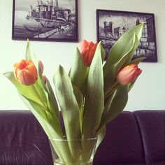 Die Frühlingsgefühle müssen warten... @r_kamaletdinov #webstagram #instagram #photo