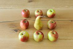 Äpfel und Birne Apartments, Big Living Rooms, Natural Materials, Pear