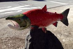 Freddie is a long gnarly-looking sockeye salmon in full breeding garb Sockeye Salmon, Sculptures For Sale, Mosaic, Ceramics, Fish, House, Color, Ideas, Ceramica