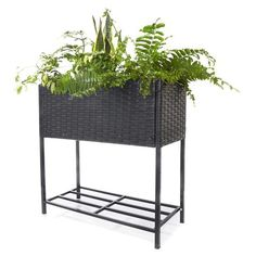 Raised Wicker Planter - Black