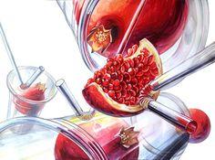 석류(자연물) & 컵(투명체) & 빨대(투명체)