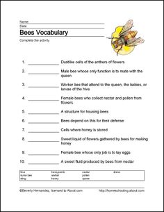 honey bee anatomy printable lesson worksheets homeschool and school. Black Bedroom Furniture Sets. Home Design Ideas