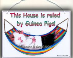 GUINEA PIG SIGN This House is Ruled by.. painting sign by Suzanne Le Good